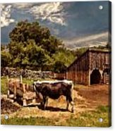 Country Life Acrylic Print by Lourry Legarde
