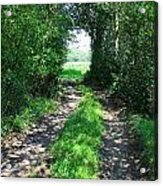 Country Road Acrylic Print by Carol Groenen