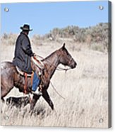 Cowboy On Horseback Acrylic Print by Cindy Singleton
