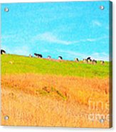 Cows On A Hill . 40d3430 . Painterly Acrylic Print by Wingsdomain Art and Photography