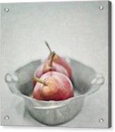 Crimson And Silver Acrylic Print by Priska Wettstein