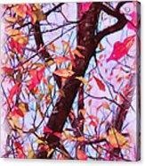 Crisp Autumn Day Acrylic Print by Judi Bagwell