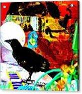 Crow's Piano Acrylic Print by YoMamaBird Rhonda