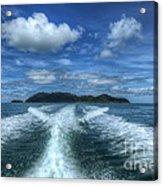 Cruising Acrylic Print by Adrian Evans
