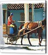 daily chores small town rural Cuba Acrylic Print by Bob Salo