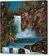 Deer Falls Acrylic Print by Gloria Jean