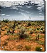 Desert Of New Mexico Acrylic Print by Thomas  MacPherson Jr