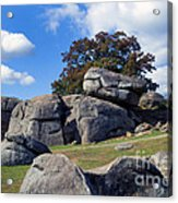 Devil's Den Formation 25 Acrylic Print by Paul W Faust -  Impressions of Light