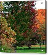 Distant Fall Color Acrylic Print by Scott Hovind