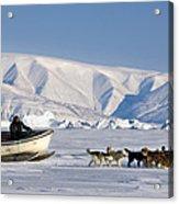 Dog Sled, Qaanaaq, Greenland Acrylic Print by Louise Murray