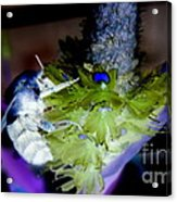 Don't Bee Blue Acrylic Print by Renee Trenholm
