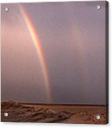 Double Acrylic Print by Skip Willits