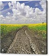 Dried Up Machinery Tracks Acrylic Print by Dave Reede