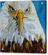 Eagle Acrylic Print by Ismeta Gruenwald