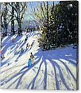 Early Snow Darley Park Acrylic Print by Andrew Macara