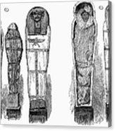 Egypt: Royal Mummies, 1882 Acrylic Print by Granger