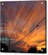 Electric Sunset Acrylic Print by Nina Fosdick