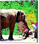 Elephant-parrot Dialogue Acrylic Print by Rom Galicia