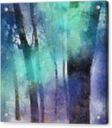 Enchanted Forest. Painting With Light Acrylic Print by Jenny Rainbow