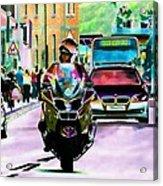 Entourage Acrylic Print by Sharon Lisa Clarke