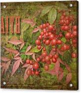 Faith Spring Berries Acrylic Print by Cindy Wright