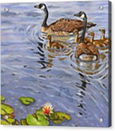 Family Outing Acrylic Print by Jeff Brimley