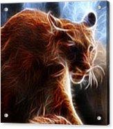 Fantasy Cougar Acrylic Print by Paul Ward
