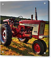 Farmall Tractor In The Sunlight Acrylic Print by Andrew Pacheco