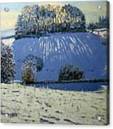Field Of Shadows Acrylic Print by Andrew Macara