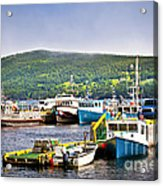 Fishing Boats In Newfoundland Acrylic Print by Elena Elisseeva