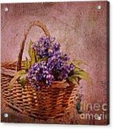 Flower Basket Acrylic Print by Judi Bagwell
