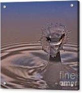 Fluid Flower Acrylic Print by Susan Candelario