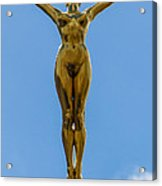 Flying Angel Acrylic Print by Donald Davis