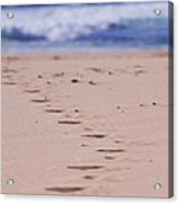 Footprints Acrylic Print by Michelle Wrighton