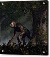 Forest Creeper Acrylic Print by Daniel Eskridge
