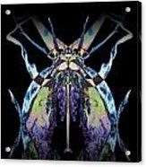 Freaky Bug Plant Acrylic Print by David Kleinsasser