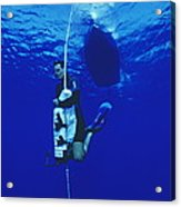 Free-diving Training Acrylic Print by Alexis Rosenfeld