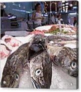 Fresh Fish On The Market Acrylic Print by Matthias Hauser