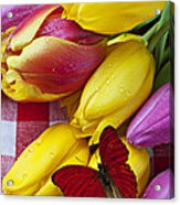 Fresh Tulips And Red Butterfly Acrylic Print by Garry Gay
