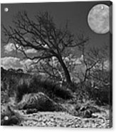 Full Moon Over Jekyll Acrylic Print by Debra and Dave Vanderlaan