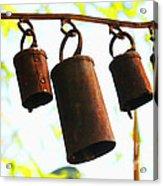 Garden Noah Bells 2 Acrylic Print by Cheryl Young