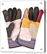 Gardening Gloves Acrylic Print by Tom Gowanlock