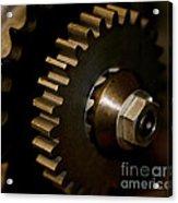 Gears  Acrylic Print by Wilma  Birdwell