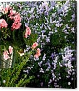 Geranium And Lilac Painting Acrylic Print by Will Borden