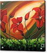 Glowing Flowers 4 Acrylic Print by Uma Devi