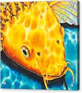 Golden Koi Acrylic Print by Daniel Jean-Baptiste