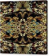 Golden Split Crop Acrylic Print by Peggi Wolfe