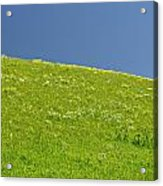 Grassy Slope View Acrylic Print by Roderick Bley