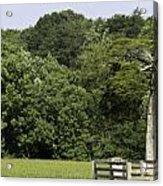 Grave Of Lafayette Meeks Appomattox Virginia Acrylic Print by Teresa Mucha