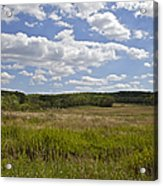 Griggstown Native Grassland Preserve Acrylic Print by David Letts